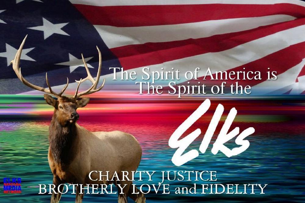 elks org    lodge  259    americanism essay contest