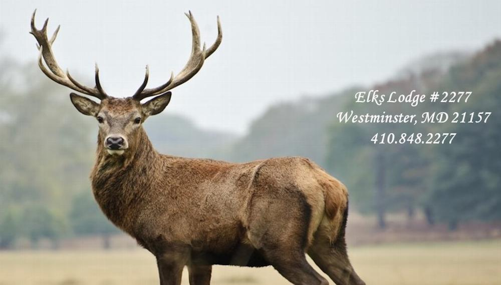 Welcome to the Westminster Elks Lodge #2277