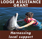 Lodge Assistance Grants