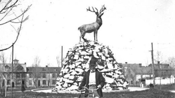 Erected in 1898 at Penn Park, York PA.  Vandals beheaded the Elk in 1987.  A project is underway to erect a new Elk at the Lodge which has been home since 1905.