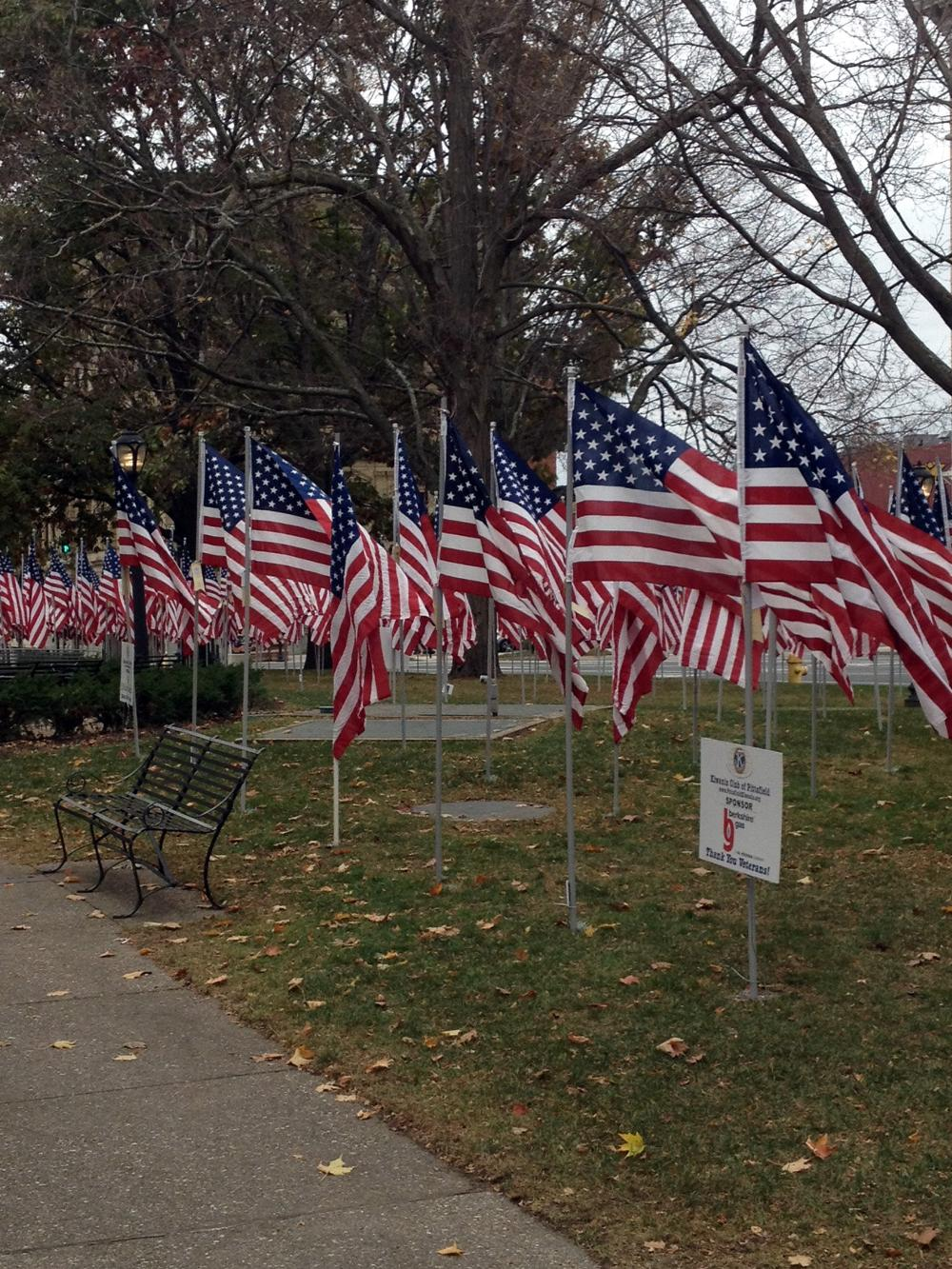 The Pittsfield Park of Honor.  Over 700 flags in  honor of Veterans who have served or are serving.  Bennington Lodge #567 is represented.