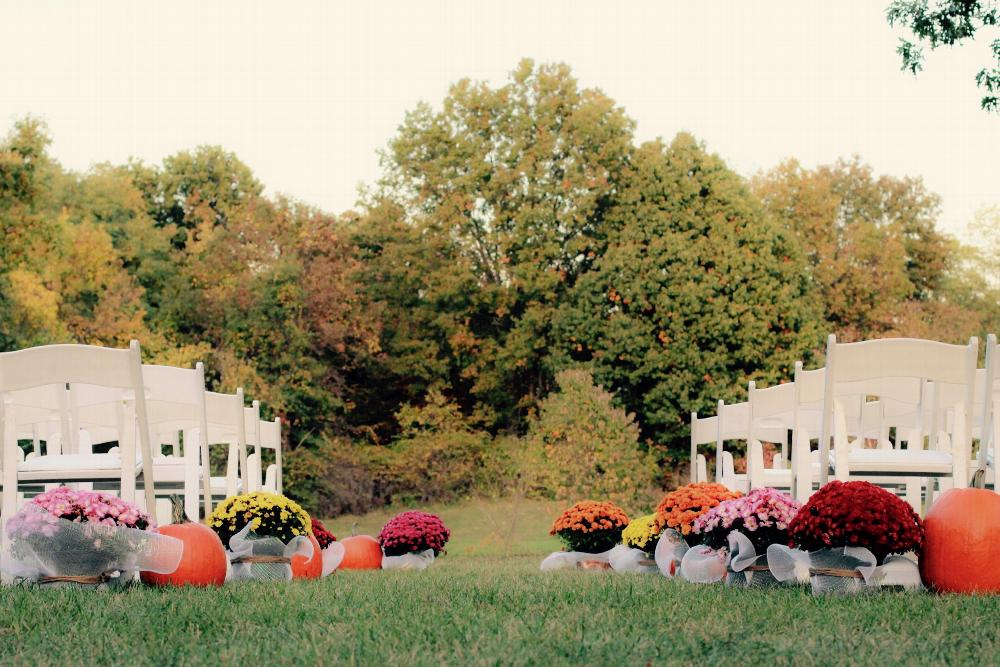 Our beautiful garden is the perfect setting for an outdoor ceremony or event.