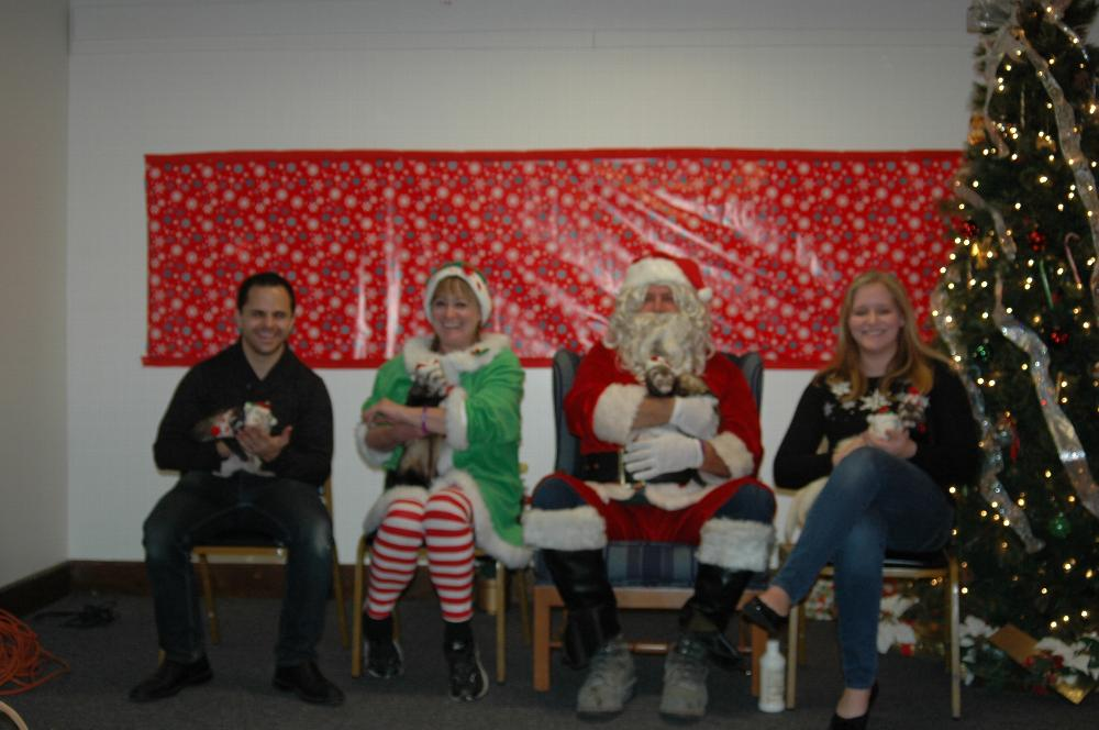 Photos with Santa - fun with ferrets!