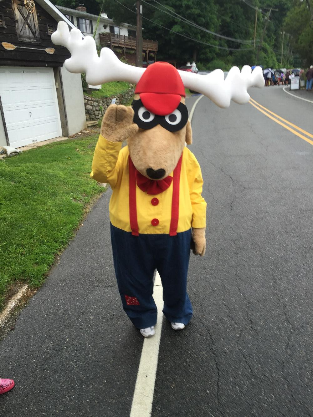 Elroy the Elk  2015