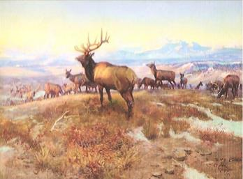 "In 1912 Charles M. Russell completed one of his most famous paintings, ""The Exalted Ruler"". After completing he gave the painting to the newly completed Great Falls Elks Lodge where it hung until 1985. The painting was placed on loan to the C.M. Russell Museum. In 1994, the Great Falls Elks Lodge decided to sell the painting with a price of $1.2 million.   Under the agreement with the Great Fall Elks Lodge, the museum had to raise funds and make the purchase by April 30, 1995. The Museum launched campaign entitled in for the Ruler with a theme of ""Give us an inch... so we can keep the Ruler."" Each gift of $250 received allowed the Museum to purchase one square inch of the painting. Approximately 69 local schools participated, including one class of 15 students alone raising $1,000.00. Looking at the picture ""The Exalted Ruler"" you will see an Elk in the middle. It is symbolic of the President of the Elks Club ""The Exalted Ruler"". On the left is the out-going ""Exalted Ruler"", a big bull with a large rack. On the right is another bull with a rack who is next year's ""Exalted Ruler"". Just to the left of this one is a bull with spike horns and is the future ""Exalted Ruler"". In front is a bird by a rack of horns hiding, the past ""Exalted Ruler."" You can tell the citizens of Great Falls knew how lucky they were to have this in their possession. The communities, especially the schools were able to keep the original painting, piece by piece. Now for our story, our very own Al Huffman, being recognized again for his Great Western Prowess was awarded a limited edition print of ""The Exalted Ruler"". We at Lodge 2363 are extremely lucky to be able to have this print hanging downstairs in our club-room. Thank You to Al Huffman for graciously giving this print to our Lodge for all of us to enjoy. Also thanks to David Dey for making the beautiful frame and to Deborah Carballeira for helping with the name plate."